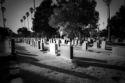The Hollywood Forever cemetery looking particularly creepy.