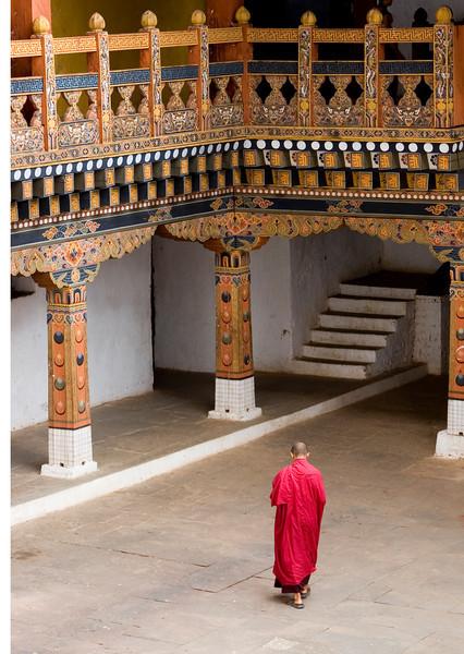 Alone-Punakha Dzong, Bhutan