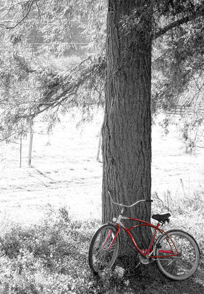 The Red Bike