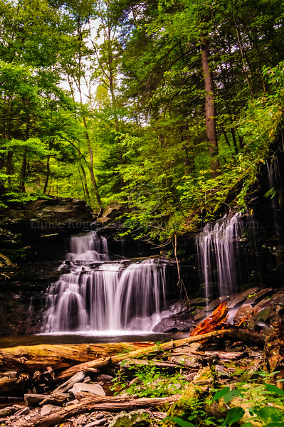 Benton Ricketts Glen
