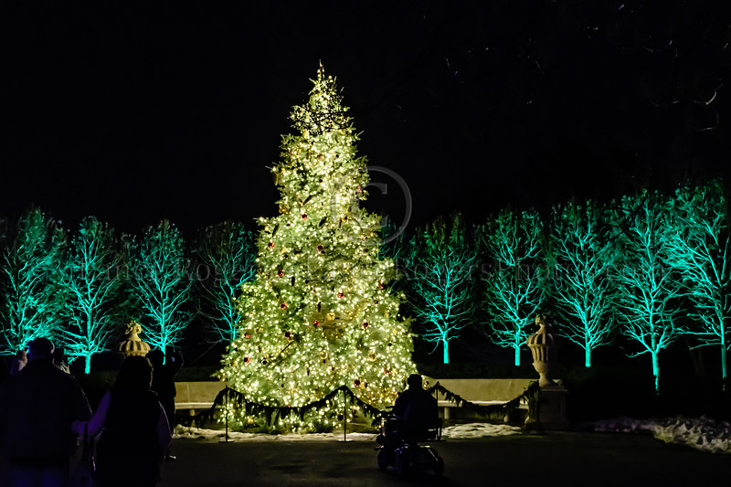 Christmas @ Longwood