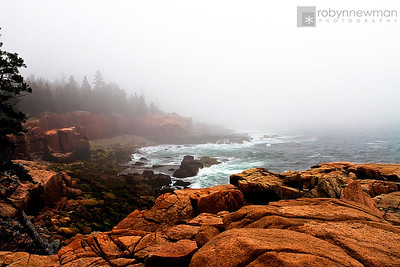 At Thunder Hole in Acadia National Park (Mount Desert Island, Maine)
