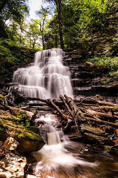 Erie, Ricketts Glen