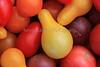 IMG_5511CherryTomatoes
