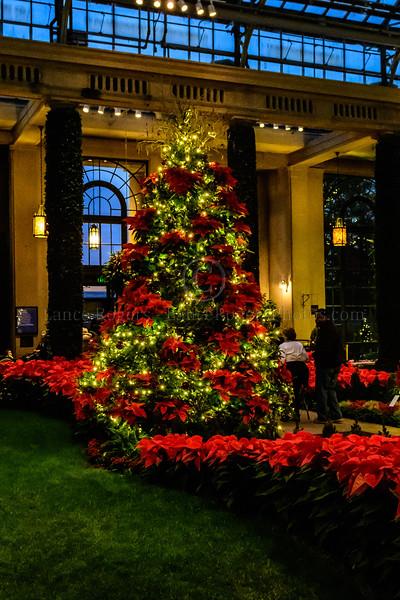 Christmas_145