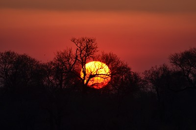 Sunset over Kruger Taken from Ngwenya Lodge. Kruger National Park. South Africa  Copyright © 2011 - Photo by Barry Jucha