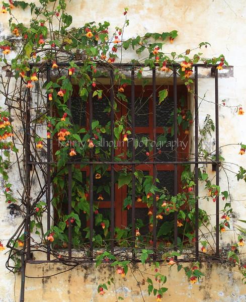 Carmel Mission Window