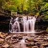 Wyandot, Ricketts Glen