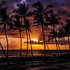 Hawaii2014_520