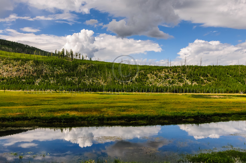 Montana_0205