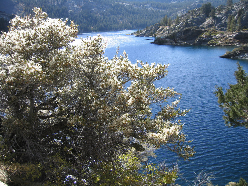 Gem Lake (a couple of miles east of the Silver/June lake loop in the Eastern Sierra)
