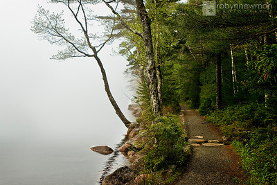 On the Jordan Pond Nature Trail in Acadia National Park (Mount Desert Island, Maine)