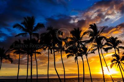 Hawaii_1394