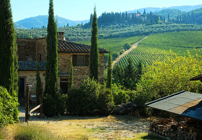 Tuscan Morning Near Greve