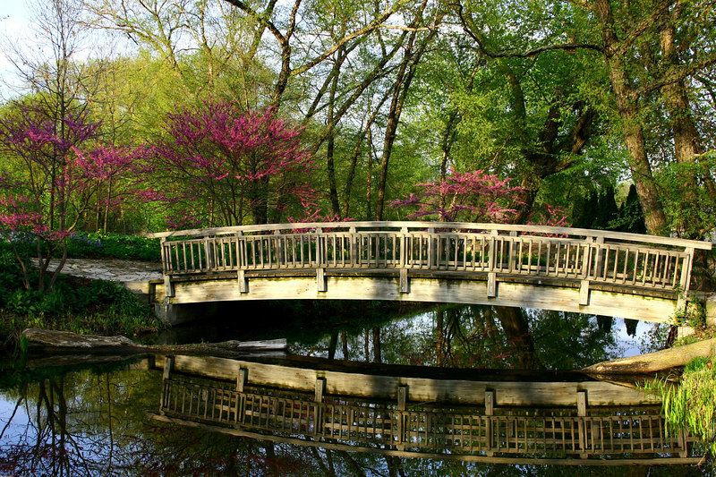Bridge of Spring