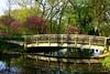 Bridge of Spring