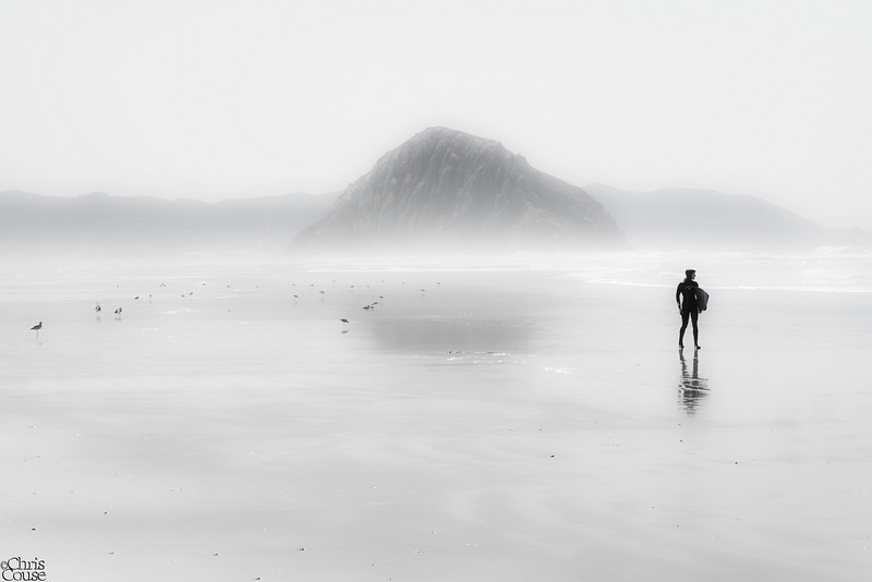 On The Beach - Morro Strand State Beach - San Luis Obispo,California