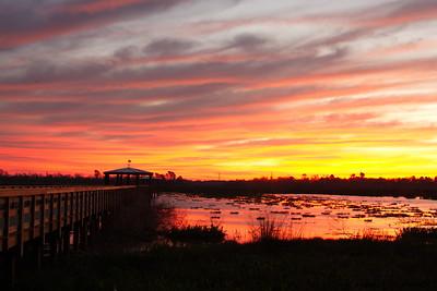 Sunrise at Cattail Marsh, Beaumont, Texas