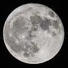 Full Hunter Moon