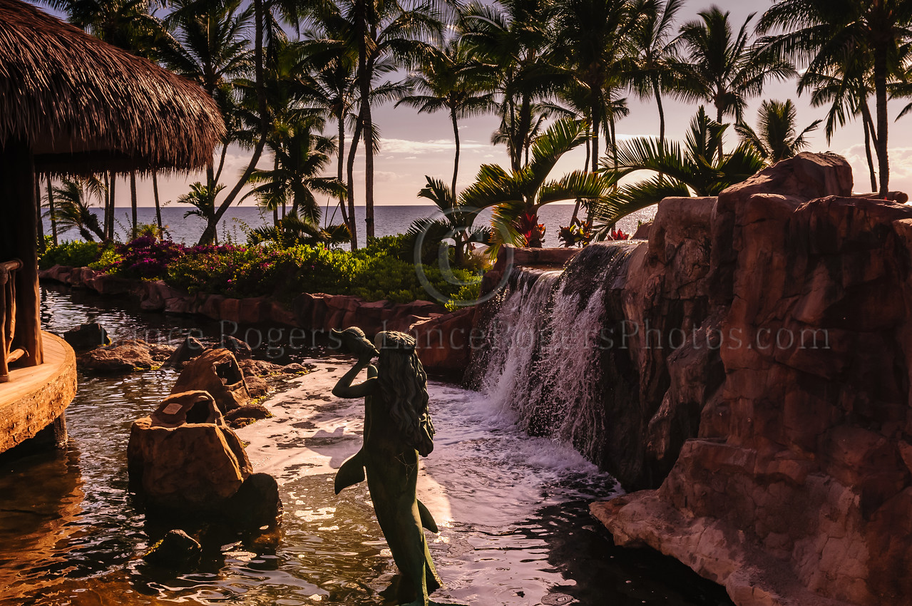 Hawaii2014_1270