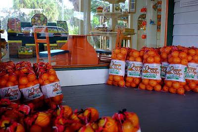 The Orange Shop, Citra, Florida