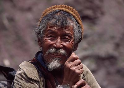 Elder, Ladakh, India