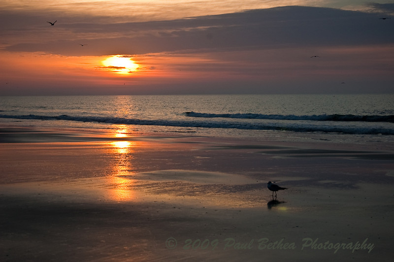 Bird's Eye View - Sunrise, Myrtle Beach, South Carolina.