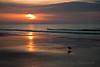 Bird's Eye View - Sunrise, Myrtle Beach, South Carolina.