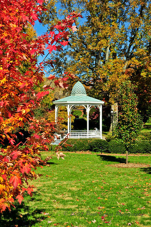 Autumn in Winston Salem, North Carolina.