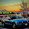 Mustang with a solarized effect to make it look more dreamy