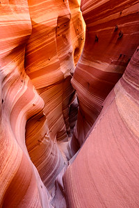 Sculpted, Zebra Canyon, Escalante National Monument, Utah