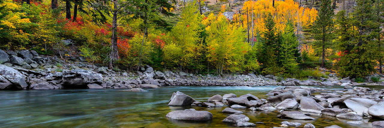 Fall color on the Wenatchee River, Washington