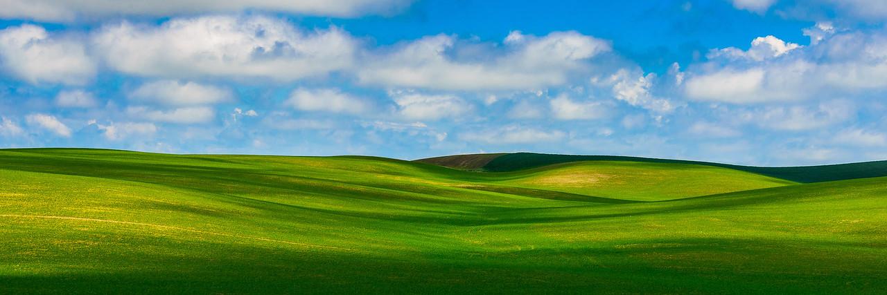 Green fields, clouds and shadows, Palouse, Washington
