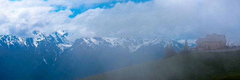 Foggy day on Hurricane Ridge, Olympic National Park, Washington