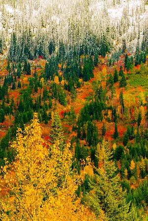 Changing seasons, Cascade Mountains, Washington