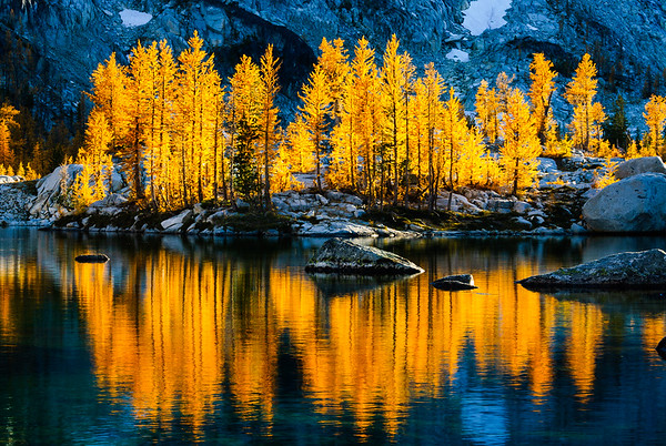 Reflected larches, Enchantments Wilderness, Washington