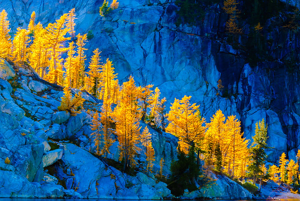 Larches and granite, Enchantments Wilderness, Washington