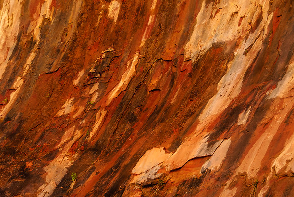 Red rock patterns, Zion National Park, Utah
