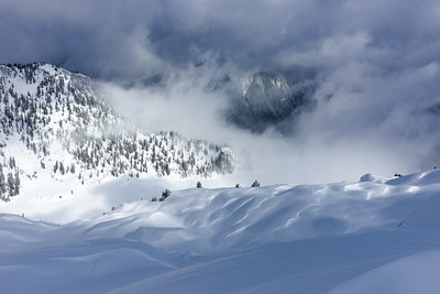 Wind effected, Cascade Mountains, Washington