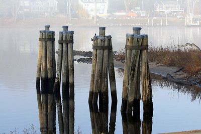 The Ferry Pilings