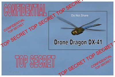 DroneDragonA_osL
