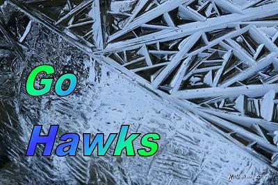 GoHawks_1364_s3