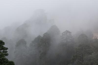Bhutan (76 of 609)