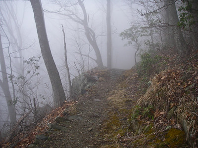 Appalachian Trail, Central Virginia