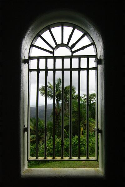 El Yunque National Rain Forest, Puerto Rico<br /> Yokahu Tower, Nelita's window