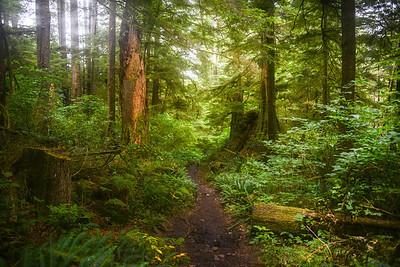 WestCoast Trail