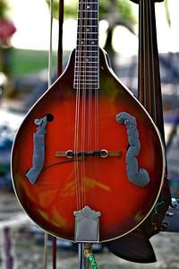 A Mandolin