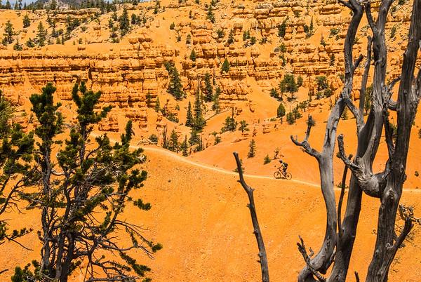 Mountain biking Red Mountain, Utah