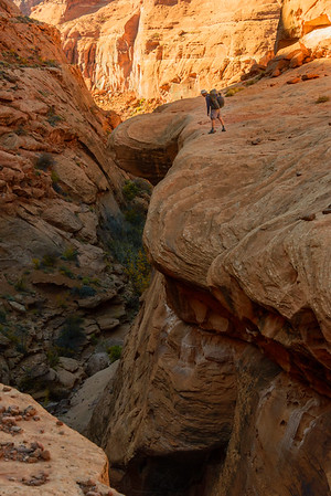 Searching for a way into the slot, Dirty Devil canyons, Utah