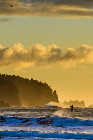 SUP surfing, Olympic Coast, Washington